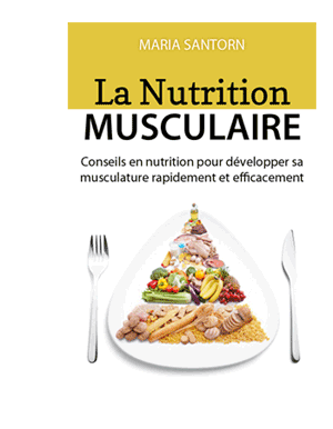 nutrition musculaire